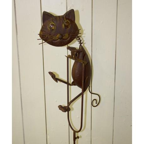 Kat vippe