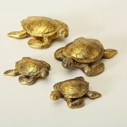 Guld skildpadde