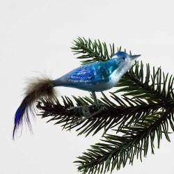 Glasfugl- Blå med glimmer næb