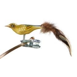 Glasfugl- Grønirisk- Mini
