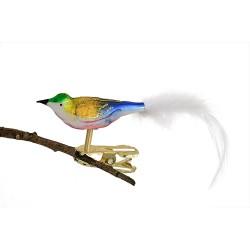 Glasfugl- Mini- Blå-guld- Grønt hoved