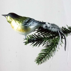 Glasfugl- Grå/ grøn- Stor