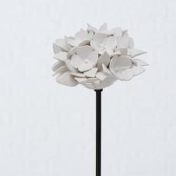 Hortensia- Hvid- Mod. 2
